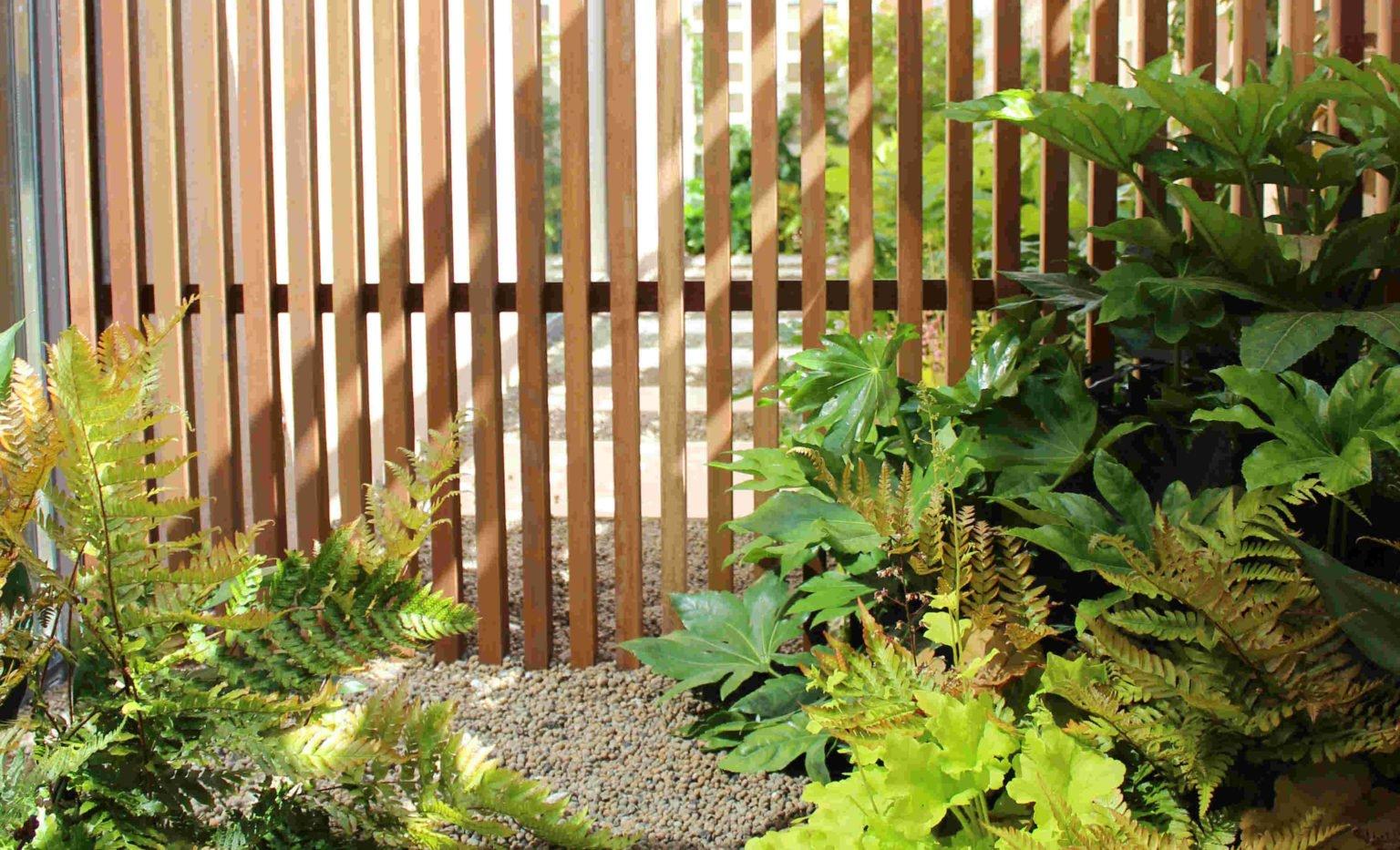 Terraza que evoca un bosque, en jardín de sombra en Madrid