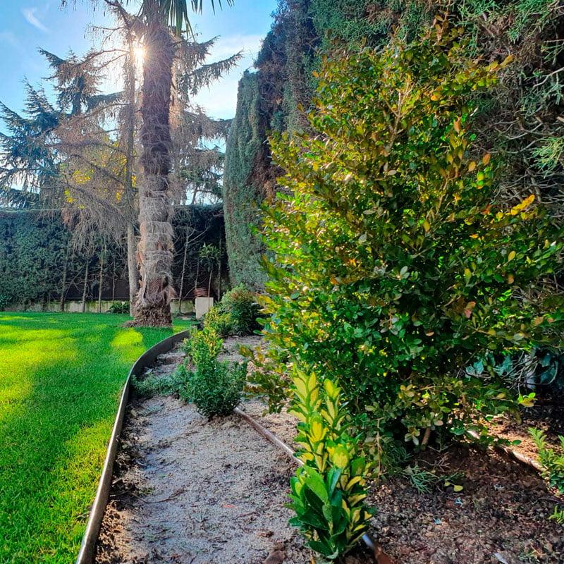 Obra de paisajismo en jardín