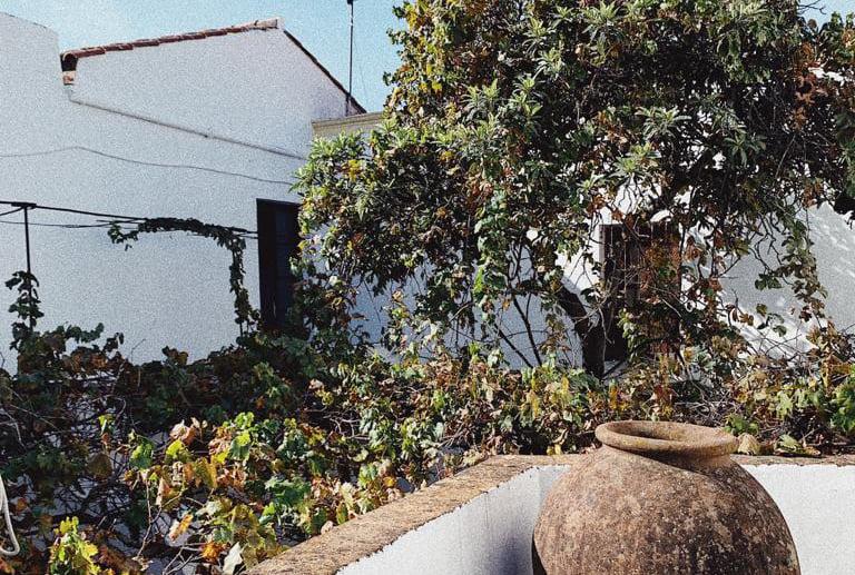 Paisajismo en convento en Extremadura
